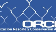 "<div class=""at-above-post-cat-page addthis_tool"" data-url=""http://tatuy.net/web/orca-proteccion-animal/""></div>Orca Organizacion para el Rescate y la Conservacion Animal<!-- AddThis Advanced Settings above via filter on get_the_excerpt --><!-- AddThis Advanced Settings below via filter on get_the_excerpt --><!-- AddThis Advanced Settings generic via filter on get_the_excerpt --><!-- AddThis Share Buttons above via filter on get_the_excerpt --><!-- AddThis Share Buttons below via filter on get_the_excerpt --><div class=""at-below-post-cat-page addthis_tool"" data-url=""http://tatuy.net/web/orca-proteccion-animal/""></div><!-- AddThis Share Buttons generic via filter on get_the_excerpt -->"
